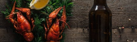Photo for Panoramic shot of red lobsters, lemon slice, dill and glass bottle with beer on wooden surface - Royalty Free Image