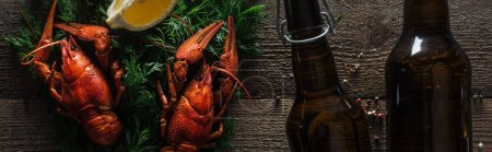 Photo for Panoramic shot of red lobsters, lemon slice, dill and glass bottles with beer on wooden surface - Royalty Free Image