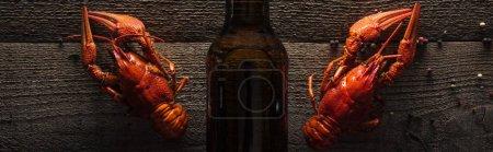 Photo pour Coup panoramique des homards rouges et de la bouteille en verre avec la bière sur la surface en bois - image libre de droit