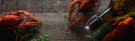 Photo for Panoramic shot of red lobsters, dill and glass bottle with beer on wooden surface - Royalty Free Image