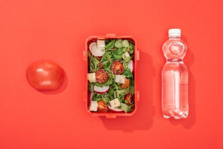 Photo for Top view of apple, bottle with water and lunch box on red background - Royalty Free Image