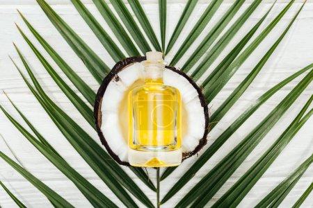 Photo pour Vue supérieure de l'huile de noix de coco dans la bouteille sur la moitié de noix de coco et la feuille verte de palmier sur la surface en bois blanche - image libre de droit