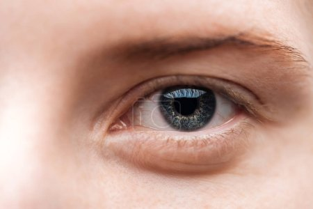 Photo for Close up view of young woman grey eye with eyelashes and eyebrow - Royalty Free Image