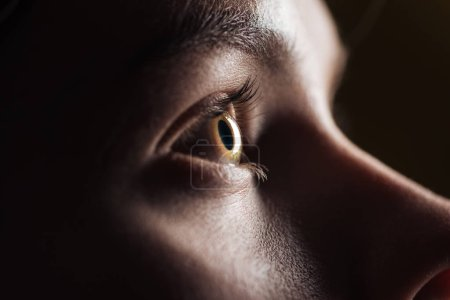 Photo for Close up view of young woman eye with eyelashes and eyebrow looking away in darkness - Royalty Free Image