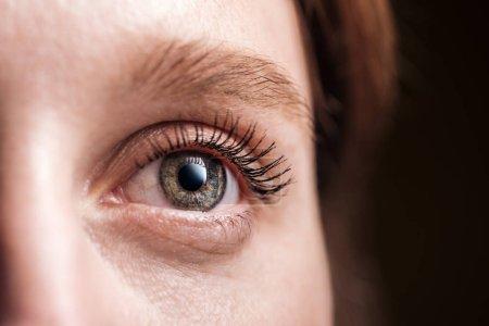 Photo pour Vue rapprochée de la jeune femme oeil gris avec cils et sourcils détournés - image libre de droit