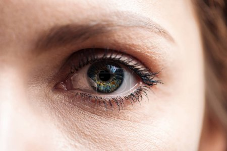 Photo for Close up view of young woman green eye with eyelashes and eyebrow looking at camera - Royalty Free Image