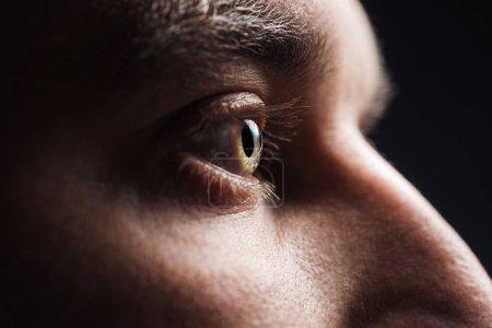 vista de cerca del ojo del hombre adulto con pestañas y cejas mirando hacia otro lado en la oscuridad