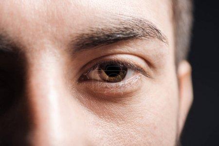 Photo pour Fermer vers le haut la vue de l'oeil brun adulte d'homme avec des cils et le sourcil regardant l'appareil-photo isolé sur le noir - image libre de droit
