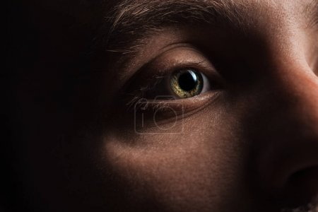 close up view of man eye with eyelashes and eyebrow looking away in darkness