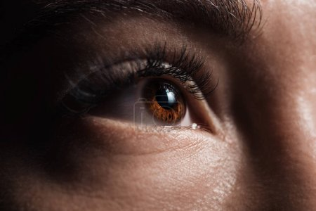 Photo for Close up view of adult woman brown eye looking away in darkness - Royalty Free Image