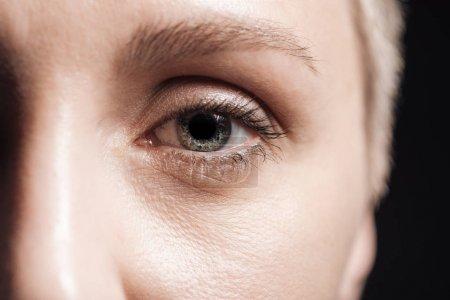 Photo pour Fermer vers le haut la vue de l'oeil gris de jeune femme regardant l'appareil-photo - image libre de droit