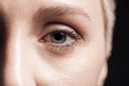 Photo for Close up view of young woman grey eye looking at camera - Royalty Free Image