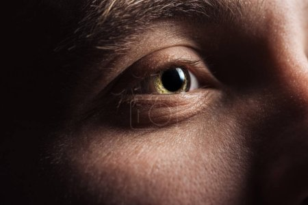 Photo for Close up view of adult man eye looking away in darkness - Royalty Free Image