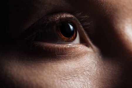 Photo for Close up view of young woman brown eye looking away - Royalty Free Image