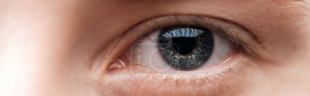 Photo for Close up view of human clear eye looking at camera, panoramic shot - Royalty Free Image