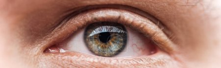 vista de cerca del ojo humano claro mirando hacia otro lado, plano panorámico