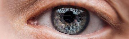 Photo pour Fermer vers le haut vue de l'oeil bleu humain regardant l'appareil-photo, projectile panoramique - image libre de droit