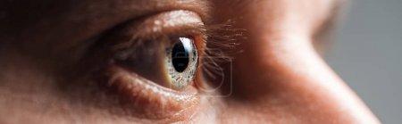 close up view of human eye looking away, panoramic shot