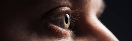 Photo for Close up view of human eye with eyelashes looking away in darkness, panoramic shot - Royalty Free Image
