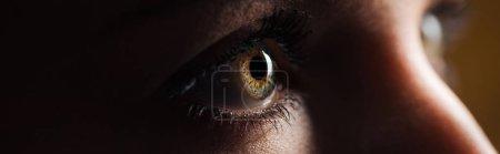 """vue rapprochée de l """"?il brun humain regardant loin dans l'obscurité, vue panoramique"""