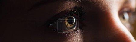 close up view of human brown eye looking away in dark, panoramic shot