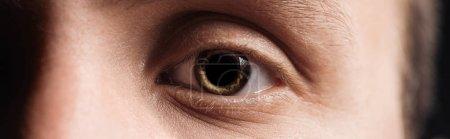 Photo pour Fermer la vue vers le haut de l'oeil humain, projectile panoramique - image libre de droit