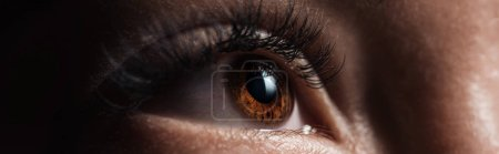 Photo for Close up view of human brown eye with long eyelashes looking away in dark, panoramic shot - Royalty Free Image