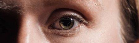 Photo pour Fermer vers le haut la vue de l'oeil humain regardant l'appareil-photo, projectile panoramique - image libre de droit