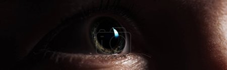 Photo for Close up view of human eye looking away in dark, panoramic shot - Royalty Free Image