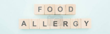 Photo for Panoramic shot of wooden blocks with words food allergy on blue - Royalty Free Image