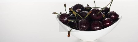Photo for Panoramic shot of fresh, sweet, red and ripe cherries with droplets on bowl - Royalty Free Image