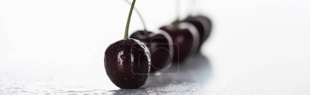 Photo for Panoramic shot of fresh, sweet, red and ripe cherries covered with droplets - Royalty Free Image