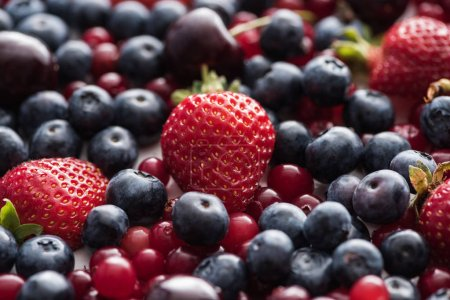 Photo for Selective focus of red, fresh and ripe cranberries, strawberries, blueberries and cherries - Royalty Free Image