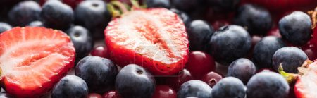 Photo for Panoramic shot of fresh and ripe cranberries, cut strawberries and whole blueberries - Royalty Free Image