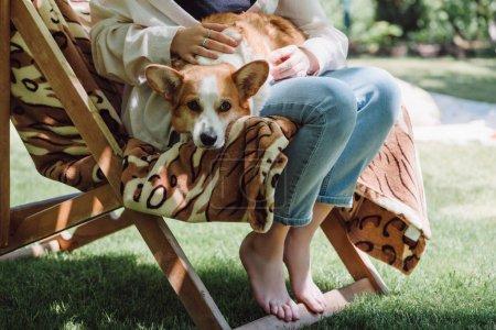Foto de Vista recortada de la chica descalza sosteniendo perro corgi galés de rodillas mientras se sienta en la silla de cubierta en el jardín - Imagen libre de derechos