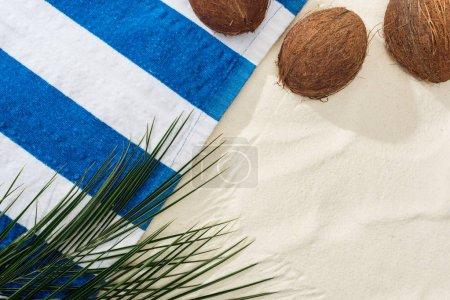 Foto de Vista superior de hojas de palma, cocos y toalla a rayas en la arena - Imagen libre de derechos