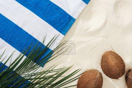 Photo pour Feuilles de palmier vertes, noix de coco et serviette rayée sur sable - image libre de droit