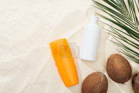Foto de Vista superior de la hoja de palma, cocos y productos de protección solar en la arena - Imagen libre de derechos
