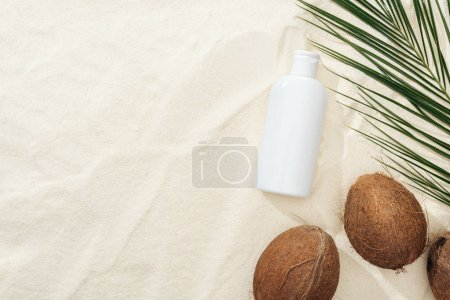 Photo for Top view of palm leaf, coconuts and sunscreen product on sand - Royalty Free Image