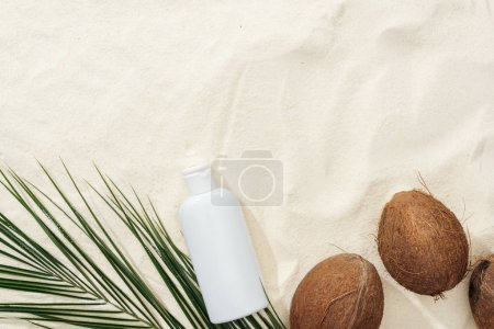 Photo for Top view of palm leaf, coconuts and sunscreen lotion on sand - Royalty Free Image