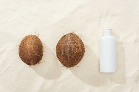 Photo for Flat lay with white sunscreen lotion and coconuts on golden sand - Royalty Free Image
