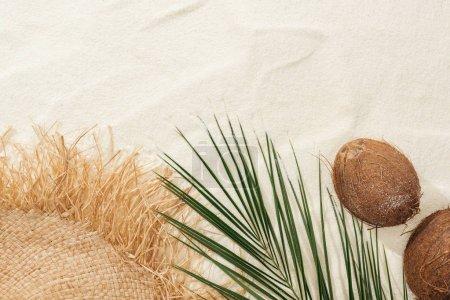 Photo pour Vue du dessus de la feuille de palmier, noix de coco et chapeau de paille sur sable - image libre de droit