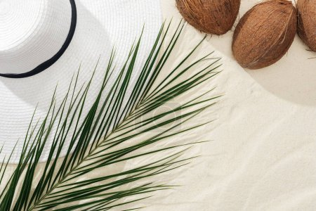Photo for Top view of coconuts, palm leaf and white straw hat on sand - Royalty Free Image