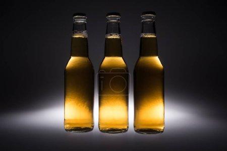 Photo pour Trois bouteilles en verre avec bière sur fond noir avec contre-jour - image libre de droit