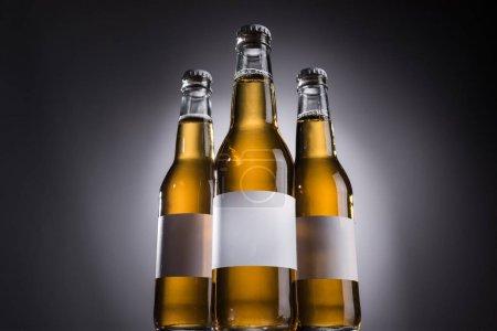 Photo pour Vue à angle bas des bouteilles en verre avec bière et étiquettes vierges sur fond sombre avec contre-jour - image libre de droit