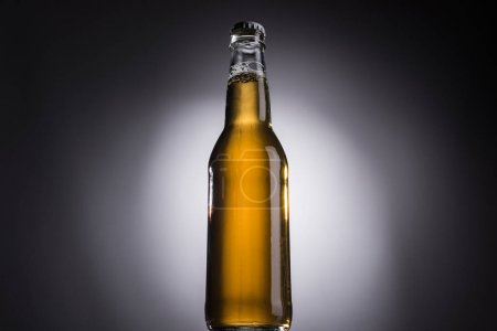 Photo for Low angle view of glass bottle with beer on dark background with back light - Royalty Free Image