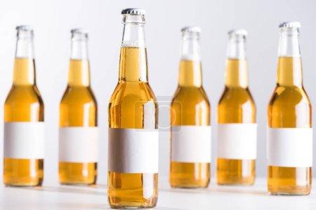 Photo pour Mise au point sélective de bouteilles de bière en verre avec étiquettes blanches vierges isolées sur gris - image libre de droit