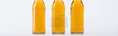 Photo for Three beer bottles in row isolated on grey, panoramic shot - Royalty Free Image