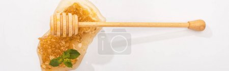 Photo for Panoramic shot of honeycomb with sweet honey, mint and wooden honey dipper on white - Royalty Free Image