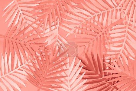 Foto de Vista superior de hojas de palma cortadas en papel tropical de coral, fondo minimalista - Imagen libre de derechos